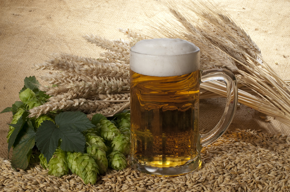 brew-your-own-beer_interesting