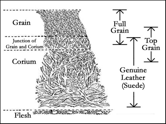 leather_cross_section