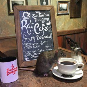 rat-cafe-san-francisco