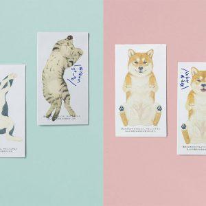 scratch-sniff-cards-pet-bellies