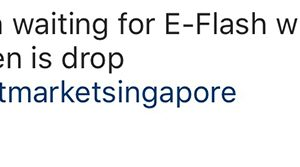 dsm-singapore-e-flash-website
