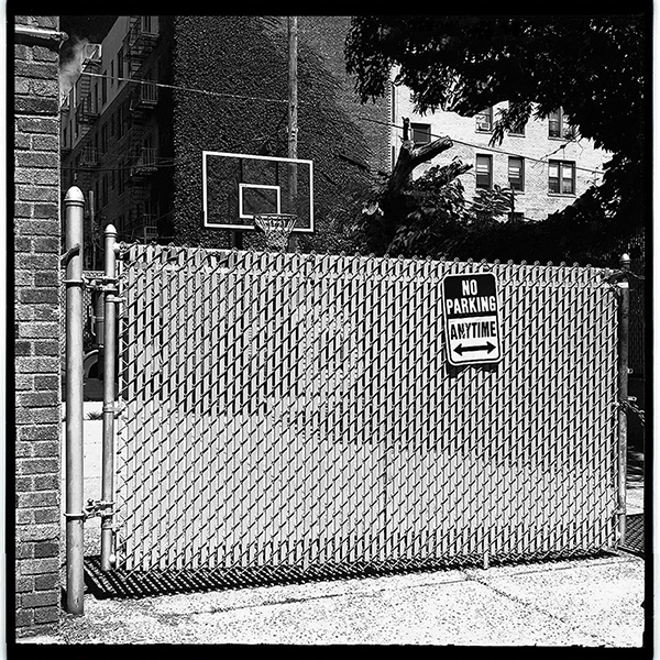 Backboards in Backyards