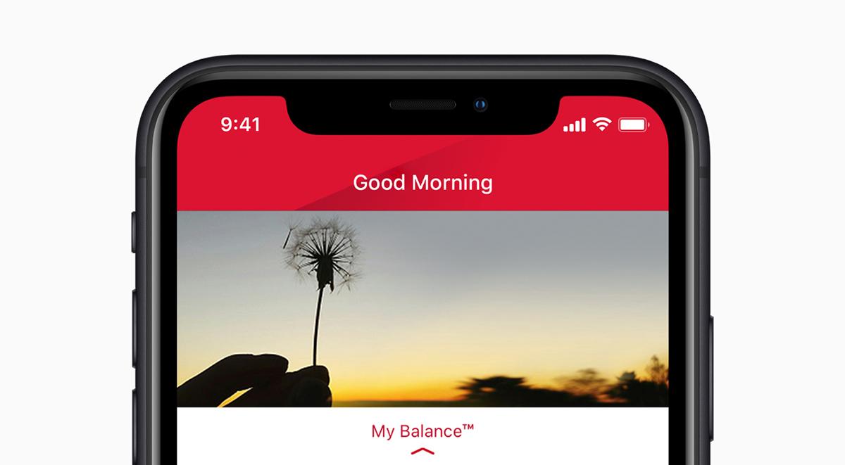 apple iphone xr battery