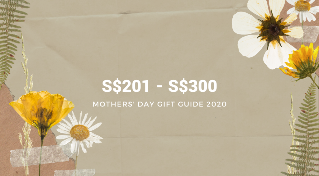 Mother's Day Gift Guide Budget 3 image